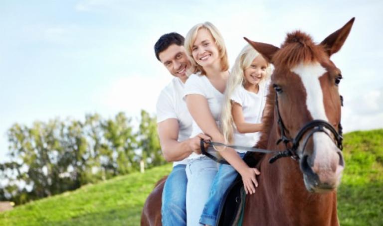 цены на конные прогулки в Харькове