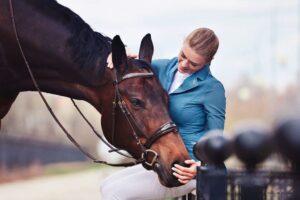 Ежедневный уход за лошадью