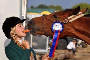 контакт с лошадью
