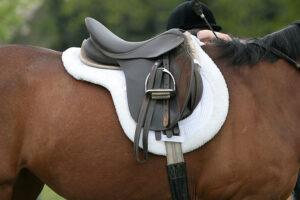 Как седлать лошадь