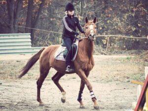 Одежда для конной прогулки