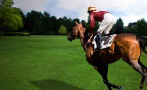Как нельзя сидеть на лошади