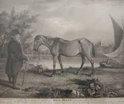 самая старая лошадь